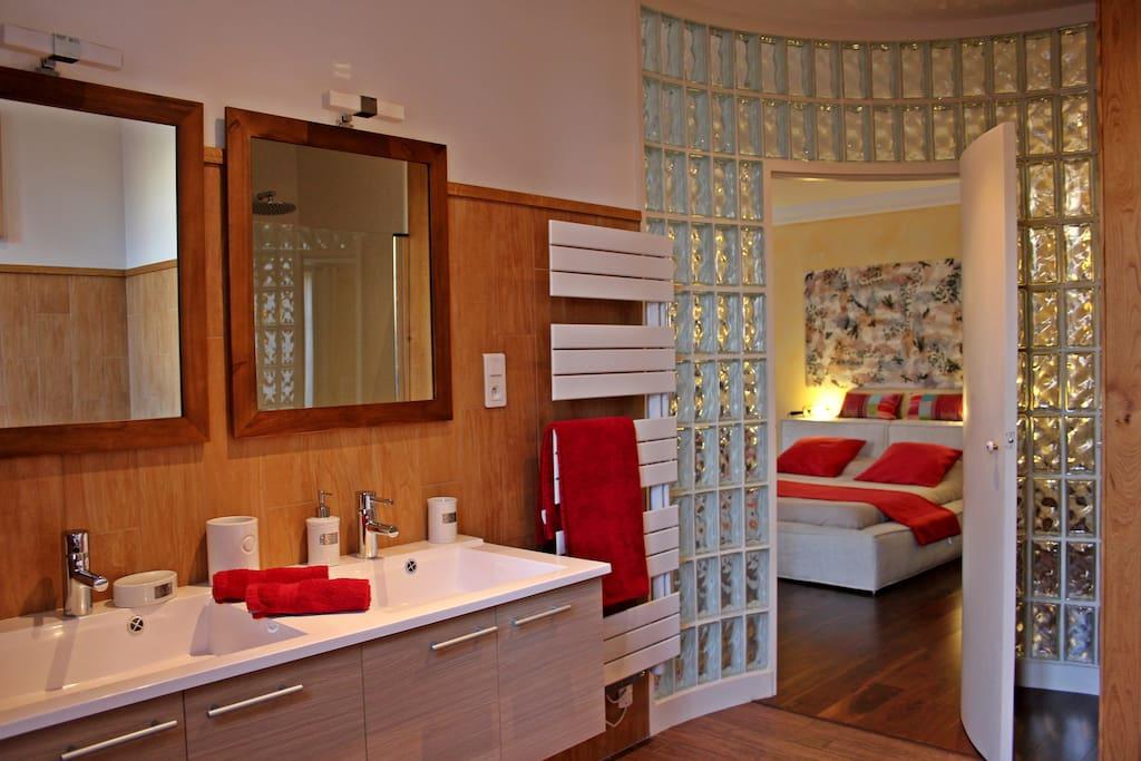 chambre priv e albi centre vue sur la cathedrale. Black Bedroom Furniture Sets. Home Design Ideas