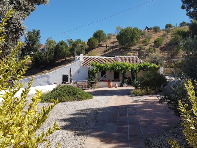 Stunning Panoramic 3 bed 2 bath Country Finca!