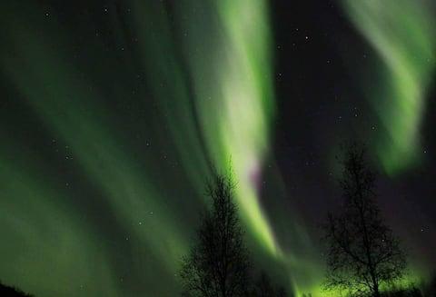 Bo flott i Sápmi. Dere leier hele stedet.