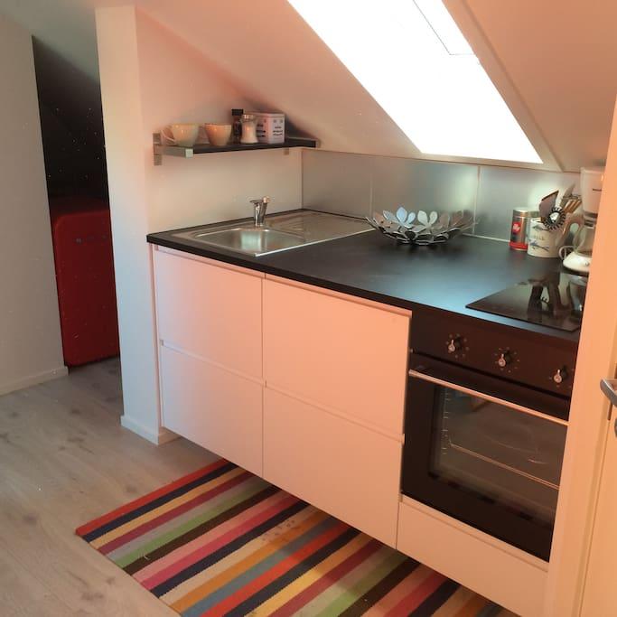 Nytt kjøkken med to stekeplater og full komfyr, nytt kjøleskap.