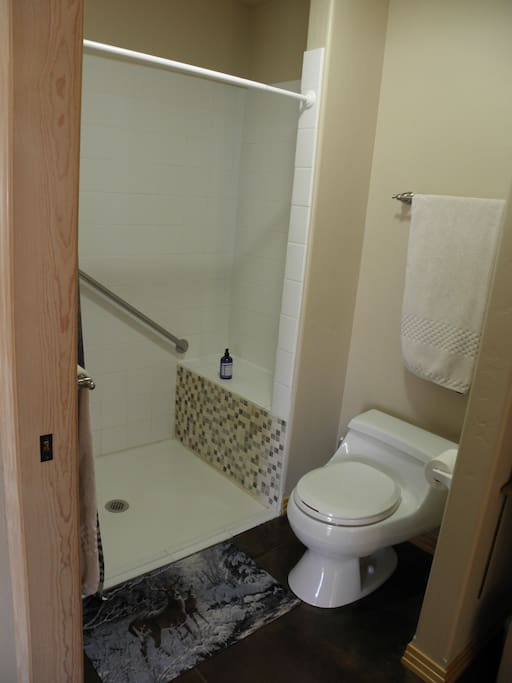 This is a roll-in shower with a grab bar, bench, and hand-held sprayer if needed.