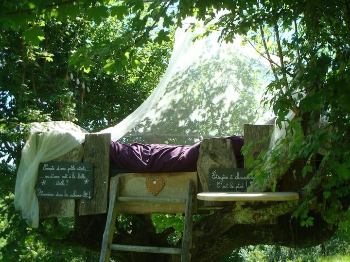 Cabane-lit perchée au milieu d'un pré