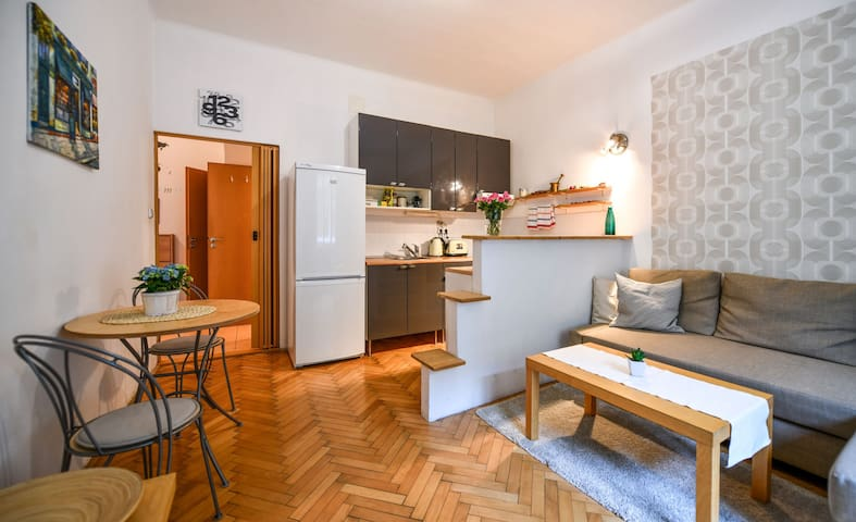 Comfy flat 10min. to the center in local area