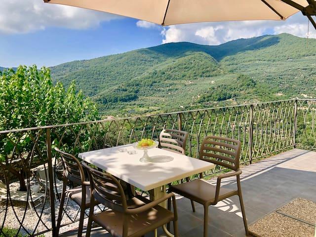 Tra ulivi e mare terrazza privata  barbecue