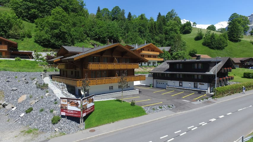 Apartment Adagio Erdgeschoss - Grindelwald - Appartement
