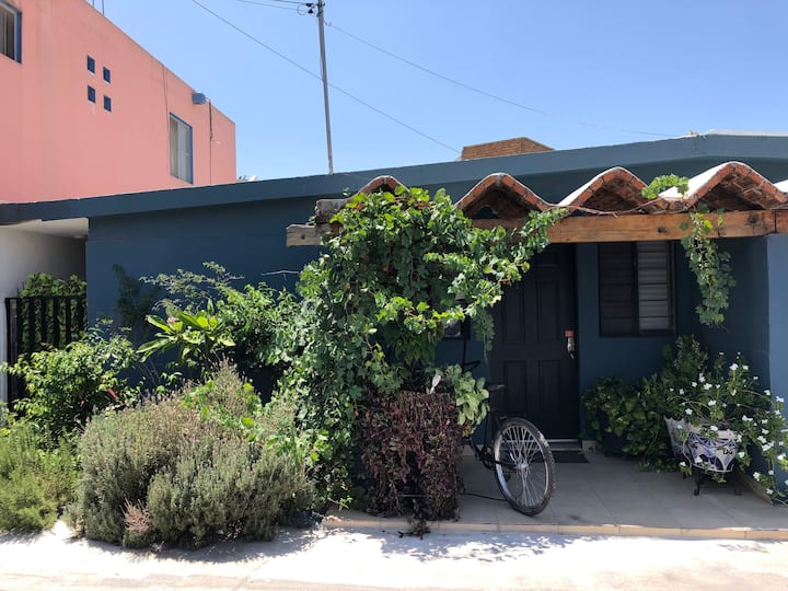 Practica Casa en San Pedro Barrio Tampiquito