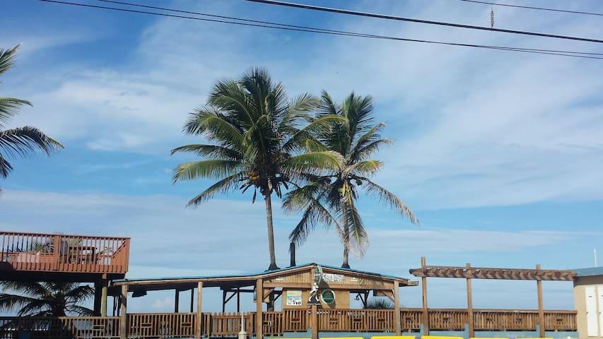 Art Oceanside Retreat 1 Bedroom:):) - Isabela - Willa