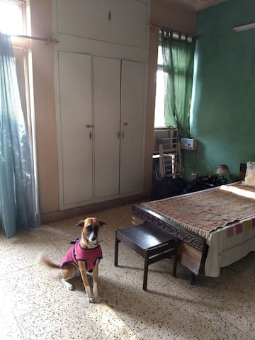 Single room homestay experience