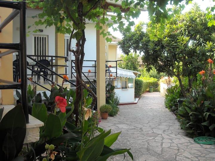 Kostas one bedroom apartment 5