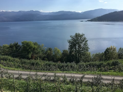 Panorama view to the Hardangerfjord
