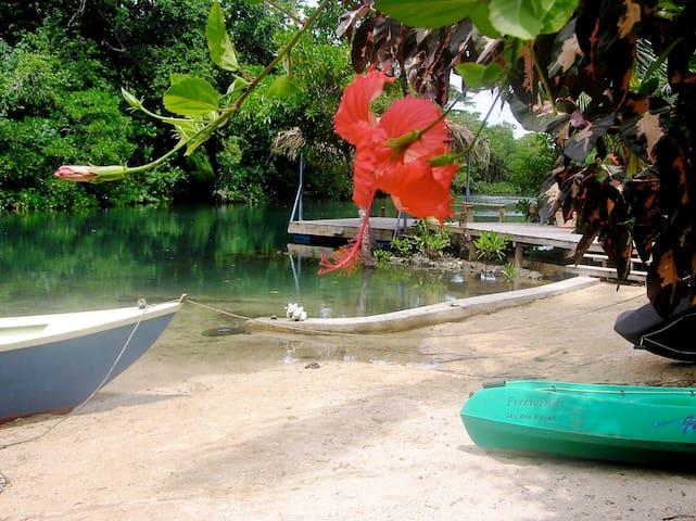 Riversong Cabin - Savusavu - Houten huisje