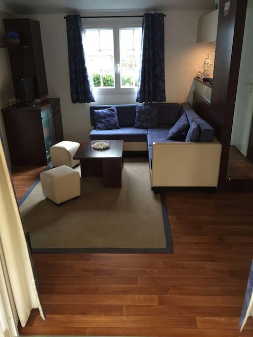 Salon avec lit covertible