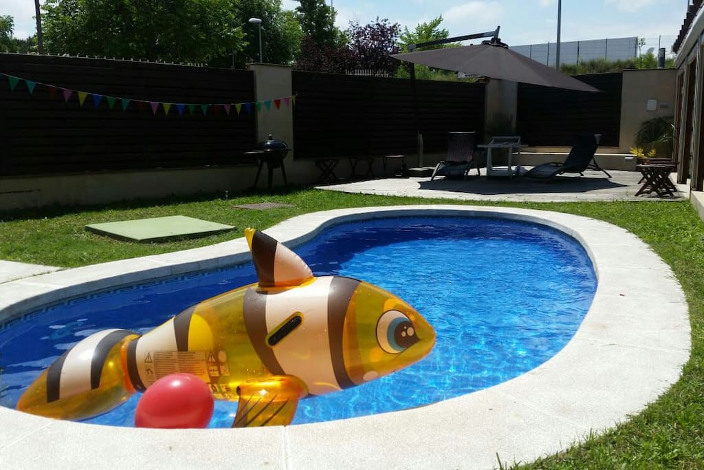 Piscina exclusiva para ti!! Exclusive pool for you!!!