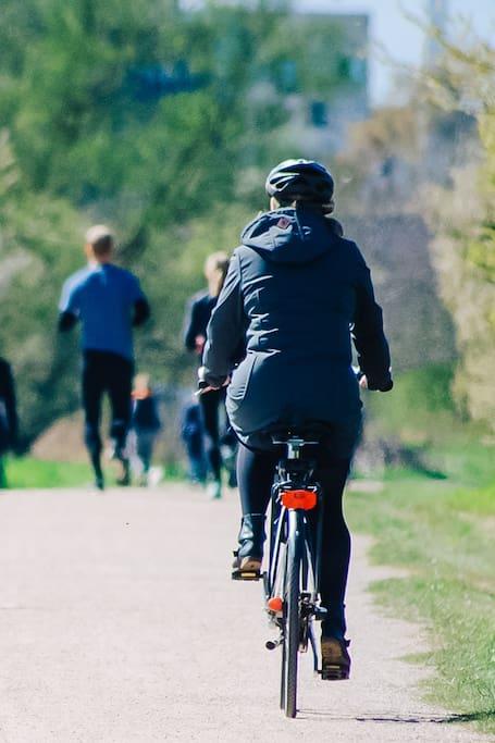 E-bike tour of Boston and Cambridge!