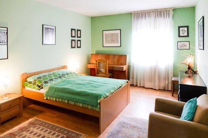 HEART OF BELGRADE- CENTER & PARKING - Belgrad - Apartament