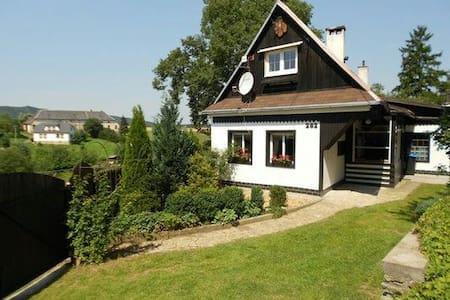 Vrijstaand huis met zwembad - Třebařov - Haus