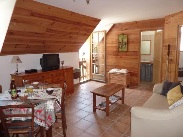 Appartement près de Saint-Lary-Soulan - Tramezaïgues - Daire