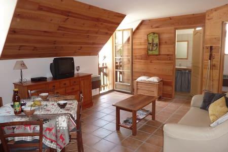 Appartement près de Saint-Lary-Soulan - Tramezaïgues