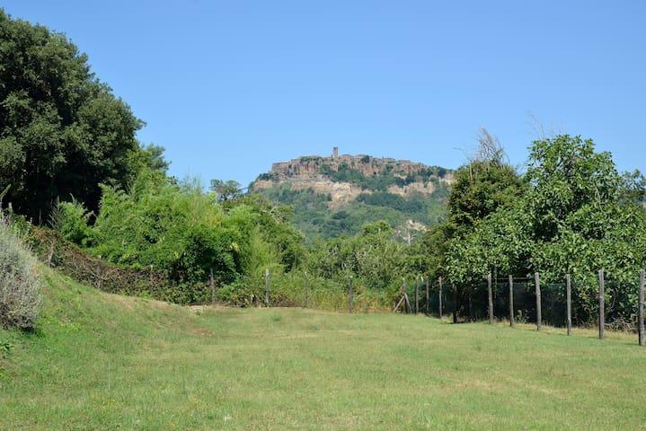 Panorama di Civita di Bagnoregio