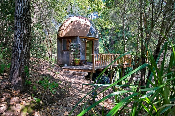 Mushroom Dome Cabin: #1  on airbnb in the world - Aptos - Houten huisje