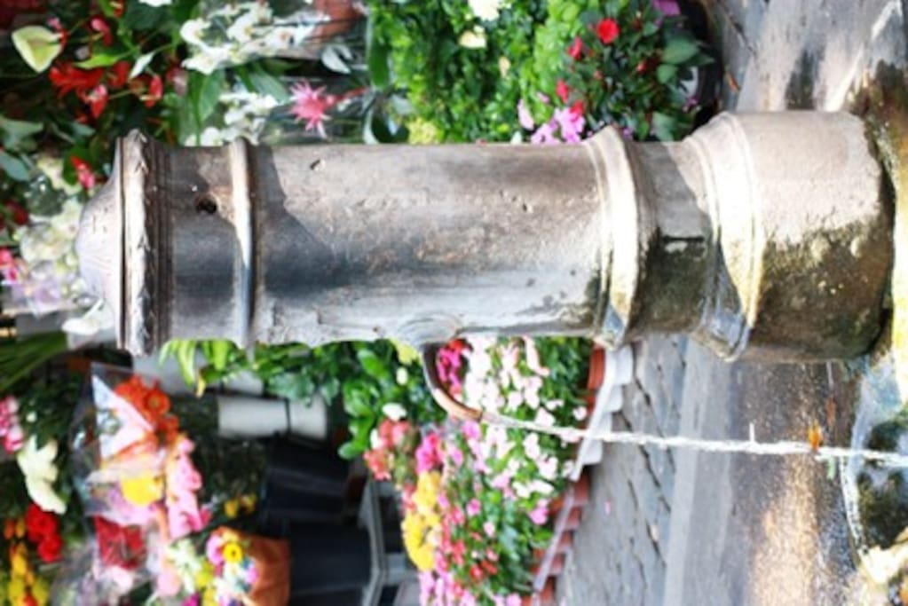 Typical roman drinking fountain