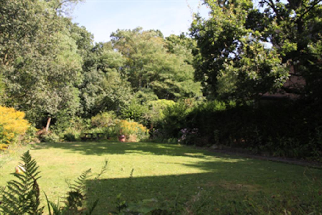 Spacious town garden for your enjoyment.