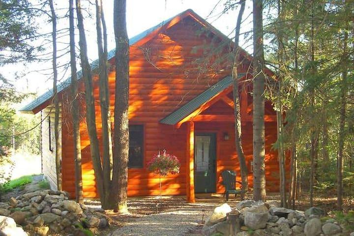 Peak Perspective Cabin