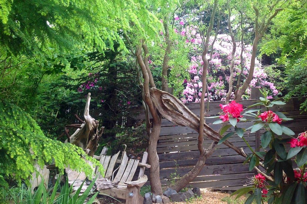Beautiful yard with interesting and artistic natural arrangements of artifacts.