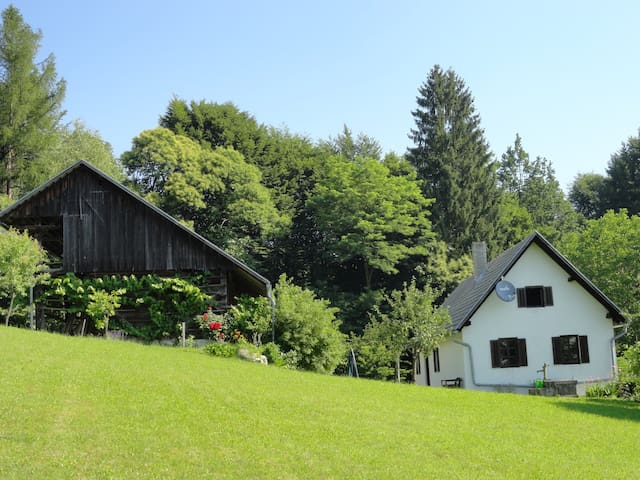 The Old Farm-peaceful location - Velika Loka - Huis