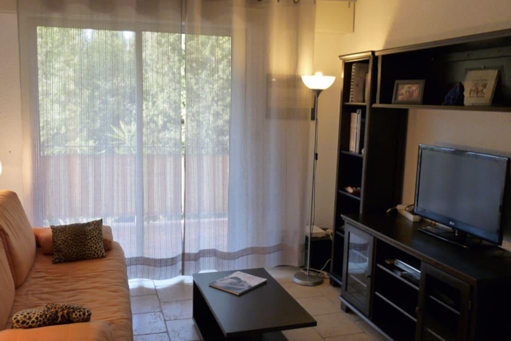 Salon avec canape gigogne (2 couchages 80 cm)