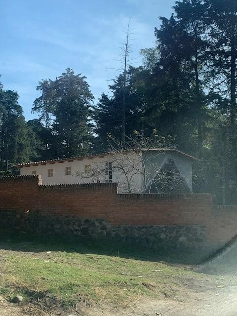 Serena cabaña con chimenea y árboles frutales