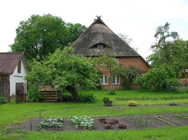 Cozy thatched house apartment - Banzkow - Byt
