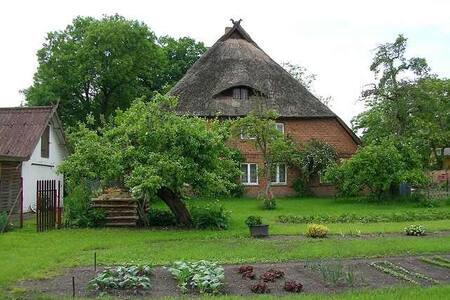 Cozy thatched house apartment - Banzkow