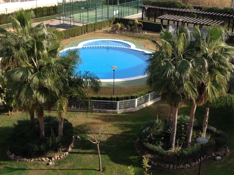 Vistas desde la terraza, agradable jardín con palmeras, paddle, zona de niños y zona de barbacoa también. la piscina cuenta  con escalera para personas con movilidad reducida.