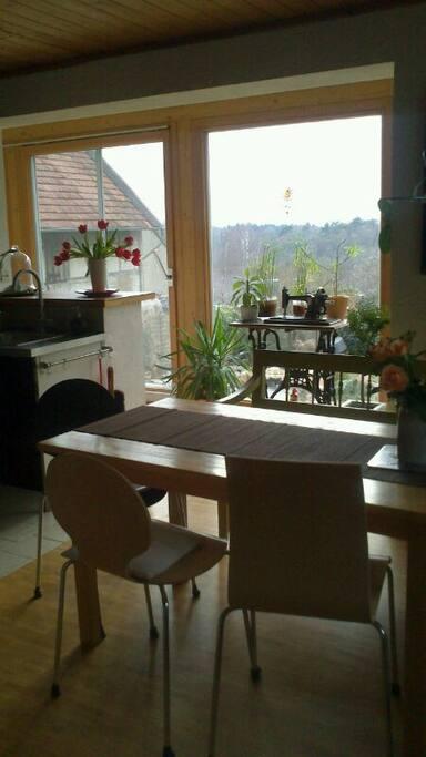 Küche- und Essbereich mit Blick auf den Garten durch die große Fensterfront.