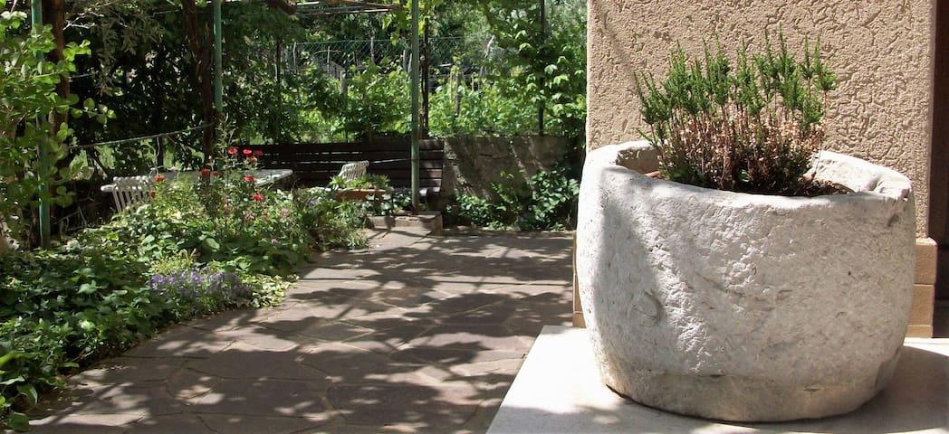 Apartment Boljunec - Your second home