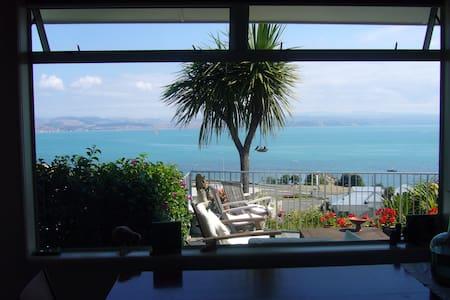 Sunny sea view hillside villa  - Napier