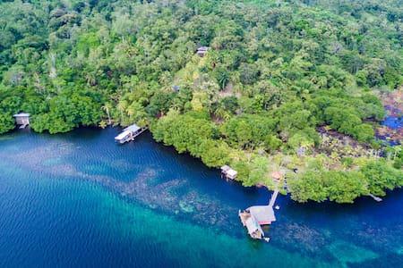 Tropical Island Jungle Retreat - sleeps groups 20+ - Cristóbal Island - 岛屿