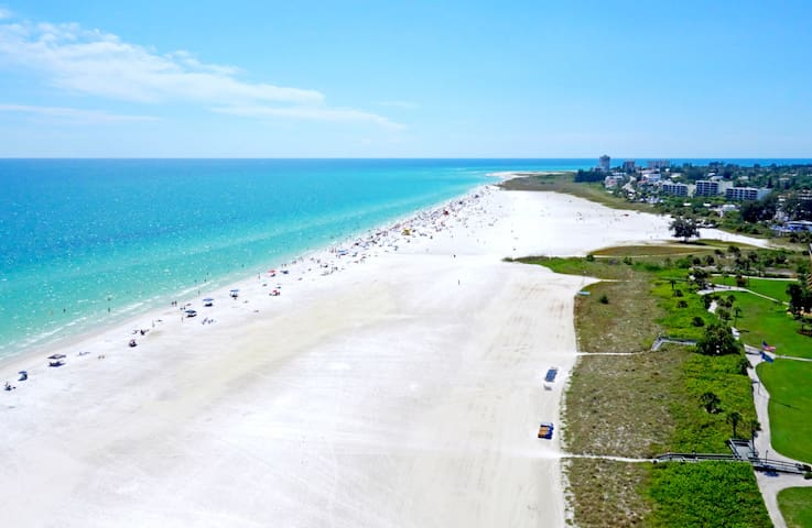 The Little Sandy - Siesta Key
