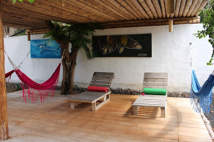 Cozy Room with Garden View & Breakfast - Puerto Ayora - Herberge