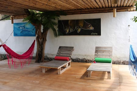 Cozy Room with Garden View & Breakfast - Puerto Ayora - Hostel