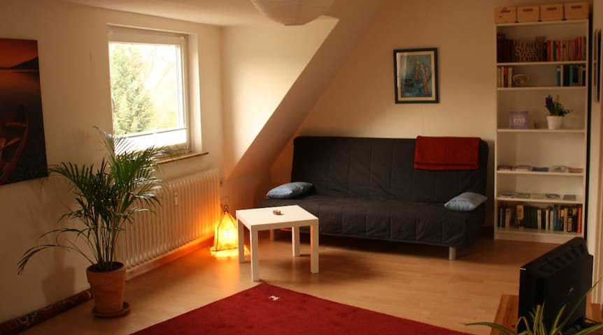 Sunny appartment- 10 min to city centre/ documenta - Kassel - Appartamento
