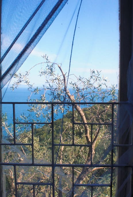 And this is one of the views from your bed. The other bed will be outside on a wooden veranda. It will be ready soon.