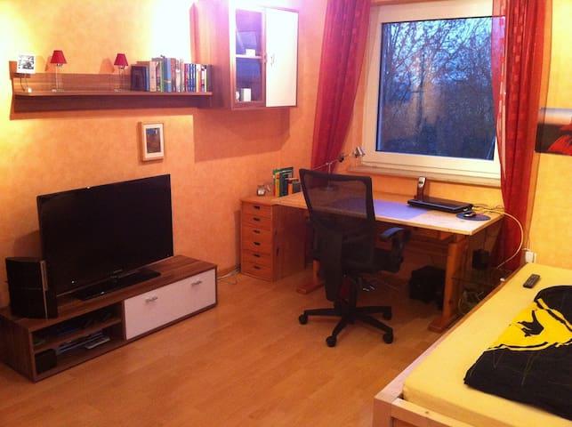 Ein-Zimmer-Messe-Apartment (1) - Lehrte - Apartamento