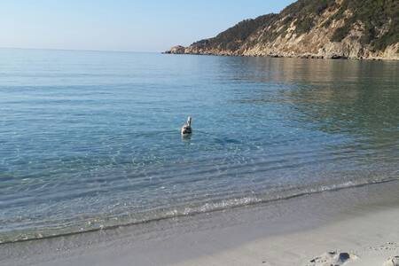 SARDINIA  CALA PIRA -30M FROM BEACH - 维拉西缪斯 - 别墅