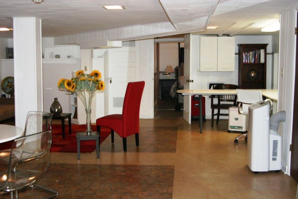 1538 b huge english basement 1br apartments for rent