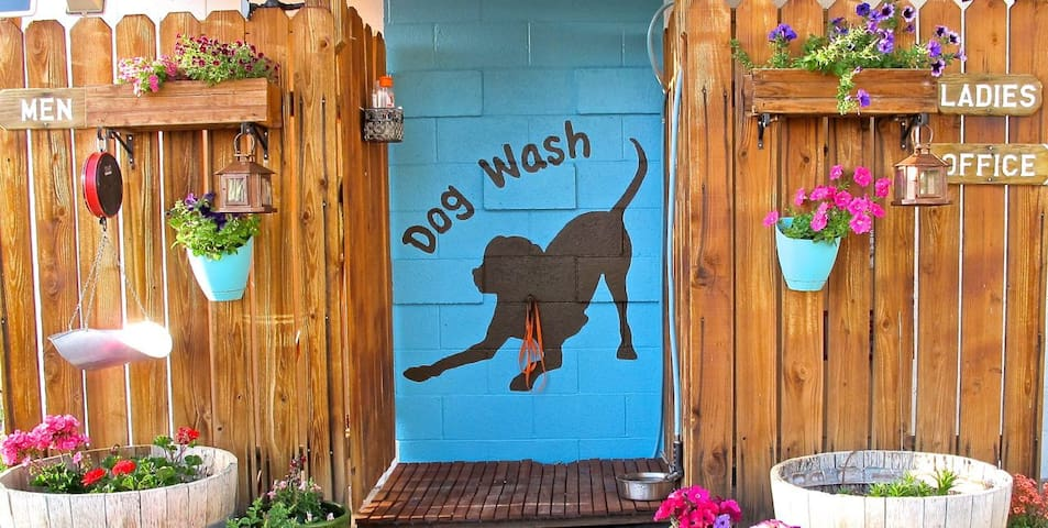 Bring your pup along! With dog wash and off leash dog beach, your four-legged friend will be a happy camper here :-)