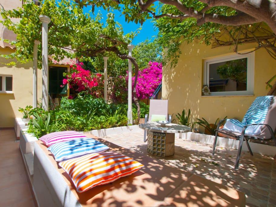 Exuberante patio lleno de plantas mediterráneas: buganvillas, limoneros, parra..