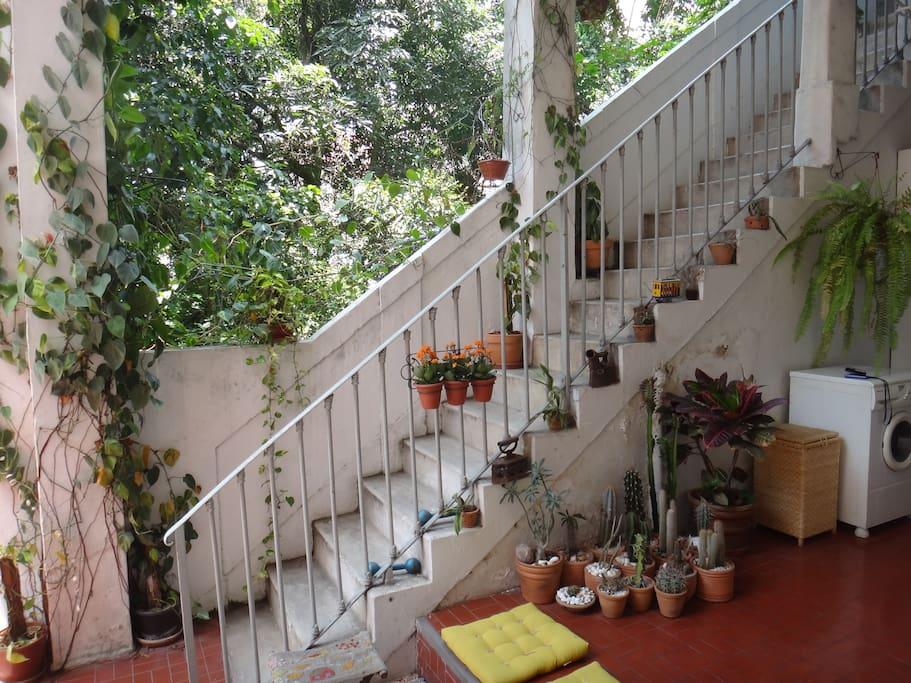 Escaleras de entrada al apartamento.