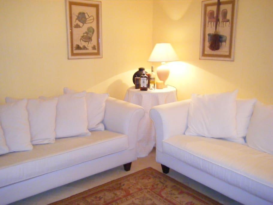 Grandi e comodi divani in salone